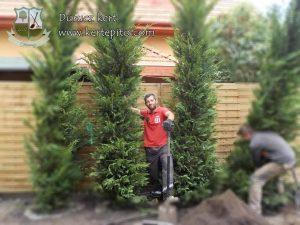 Durucz Attila | Kertépítés és kertfenntartás | Budapest és Pest megye