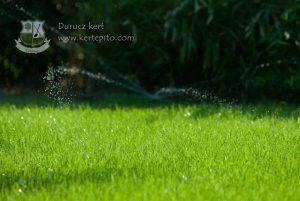 Gyepszőnyegezés és füvesítés Budapest és Pest megye | Durucz kert