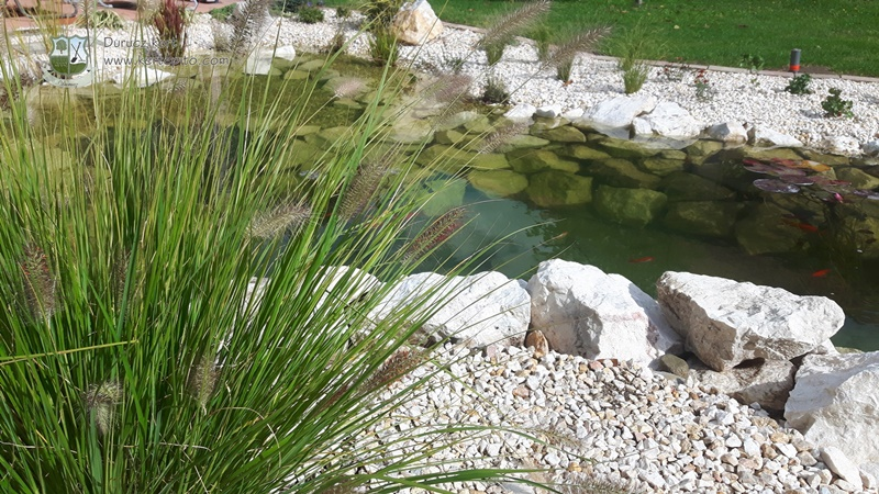 Sziklakert és kerti tó