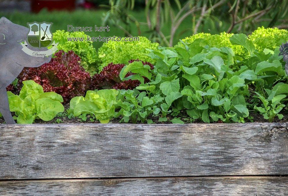 Magas ágyás zöldségeknek